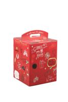 Valisette Munich box carton rouge décoré 9 bières 33cl