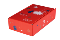 Coffret Sofia carton décoré rouge festif 2 bouteilles
