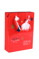Sac Boxbag Sofia papier pélliculé rouge festif 3 bouteilles