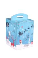 Valisette Box Santa Ana 21 carton décoré bleu Noël 9 bières 33cl