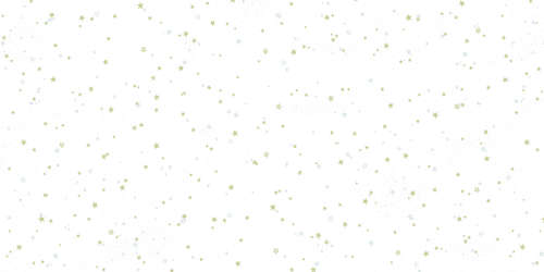 Image du produit Film Polypro Stars2 40µ 0.80x120m