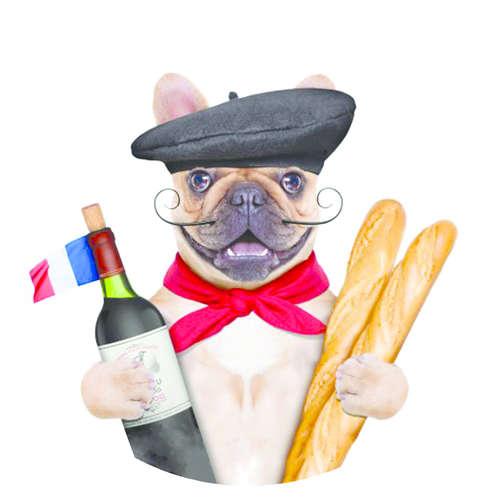 Image du produit Bouchon Vinolok cristal - France/French tradition