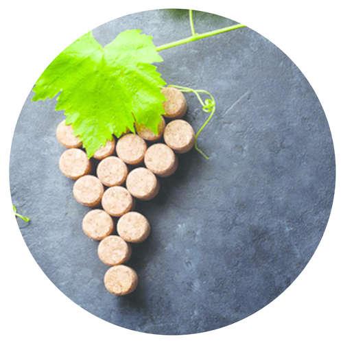 Image du produit Bouchon Vinolok cristal - Tradition/Grappe feuille